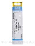 Tegumentinum 200K - 140 Granules (5.5g)