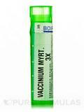 Vaccinium Myrtillus 3x