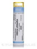 Vesica Urinaria 200K - 140 Granules (5.5g)