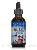 Well Child Echinacea-Elderberry Herbal Syrup (Alcohol Free) 2 fl. oz (59.14 ml)
