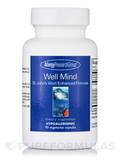 Well Mind St John's Wort Enhanced Formula - 90 Vegetarian Capsules
