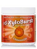 Xylitol Gum, Cinnamon - 100 Pieces (5.29 oz / 150 Grams)