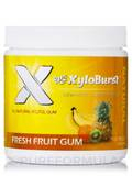 Xylitol Gum, Fresh Fruit - 100 Pieces (5.29 oz / 150 Grams)