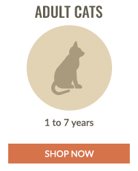 https://i3.pureformulas.net/images/static/200X200_Cats_and_Dogs_Shop_by_Age_Adult_Cats.jpg