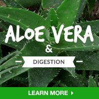 Digestive HealthIN - Category Drop Down Bottom 200x200 - Aloe Vera - 090315