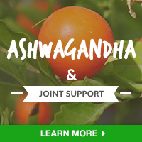 JointIN - Category Drop Down Bottom 200x200 - Ashwagandha- 092615