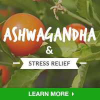 Stress Relief Interest - Category Drop Down Bottom 200x200 - Ashwagandha- 091015