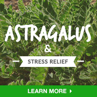 Stress Relief Interest - Category Drop Down Bottom 200x200 - Astragalus - 091015.
