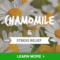 StressIN - Category Drop Down Bottom 200x200 - Chamomile- 100815