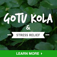 Stress Relief Interest - Category Drop Down Bottom 200x200 - Gotu Kola - 091015