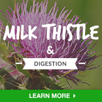 Digestive HealthIN - Category Drop Down Bottom 200x200 - MilkThistle- 090315