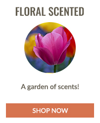 https://i3.pureformulas.net/images/static/200x200_Personal_Care_Essentials_by_Fragrance_Floral_Scented.jpg