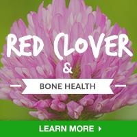 BoneIN - Category Drop Down Bottom 200x200 -Red Clover - 092615    (copy)