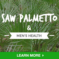 Male - Category Drop Down Bottom 200x200 - Saw Palmetto - 092215
