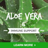 Immune Interest - Category Drop Down Bottom 200x200 - Aloe Vera- 101315
