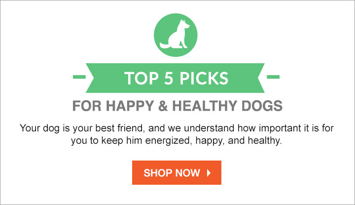 https://i3.pureformulas.net/images/static/720x415_Top5picks_Dogs_101215.jpg