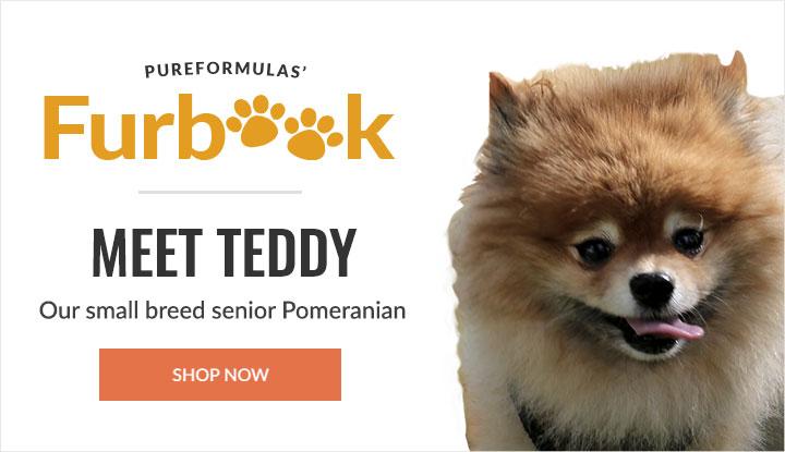 https://i3.pureformulas.net/images/static/720x415_furbook_Meet_Teddy.jpg