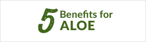 5 Benefits of Aloe