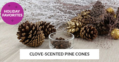 Holiday Recipe Favorites: Clove Scented Pine Cones