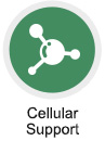 Cellular Support