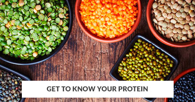 402x211 - Generic - Get to Know Your Protein - 070118