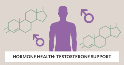 Hormone Health: Testosterone Support