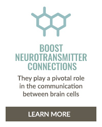 https://i3.pureformulas.net/images/static/Inside_Story_Brain_health_Boost_Neurotransmiter_Connections_slideshow.jpg