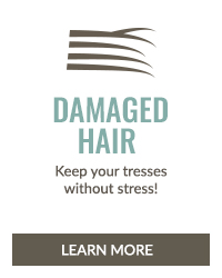 https://i3.pureformulas.net/images/static/Inside_Story_Hair_Health_Damaged_Hair_072016.jpg
