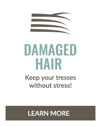 https://i3.pureformulas.net/images/static/Inside_Story_Hair_Health_Damaged_Hair_072016.jpg