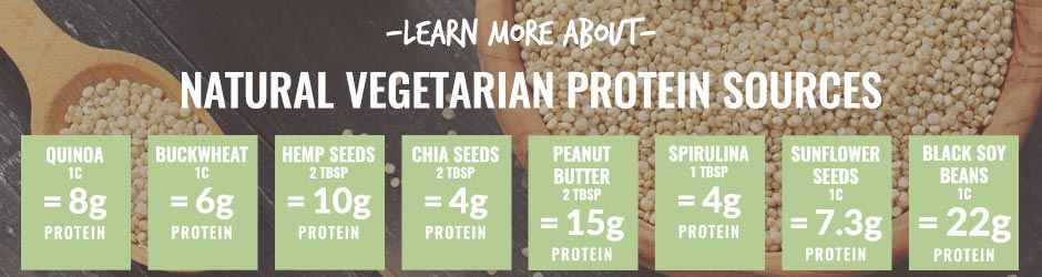 Learn More About Vegetarian Protein Sources