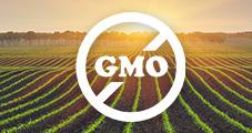 Non-GMO Guide