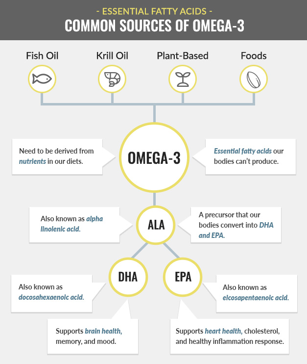 Common Sources of Omega-3