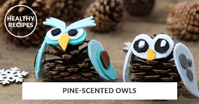 Healthy Recipes - Pine-Scented Owls