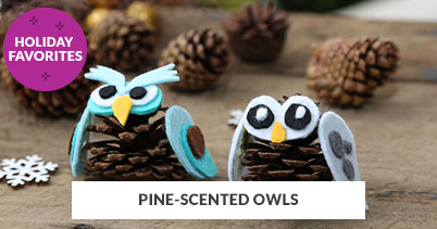 Holiday Recipe Favorites: Pine-Scented Owls