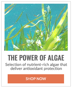 The Power of Algae