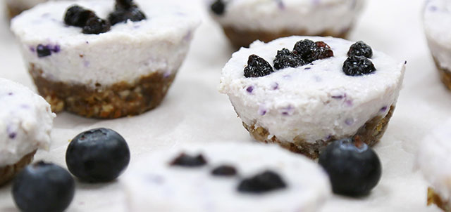 Vegan Blueberry Cheesecake Bites