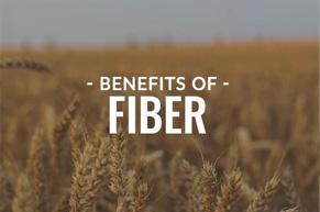 CHOLESTEROL SUPPORT: Dietary Fiber