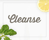 Cleanse Support