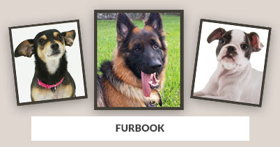 From Our Pet Store: Furbook