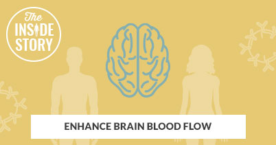 The Inside Story: Enhance Brain Blood Flow