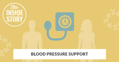 The Inside Story: Blood Pressure Support