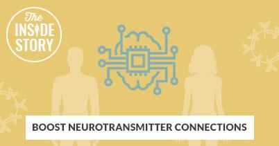https://i3.pureformulas.net/images/static/inside_story-Boost-Neurotransmitter-Connections_060418.jpg