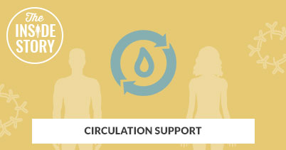 The Inside Story: Circulation Support
